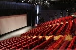 Cinéma: une des meilleures années pour les salles françaises depuis 1966
