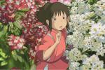 Japon: le musée Ghibli ferme ses portes à cause de l'épidémie de coronavirus